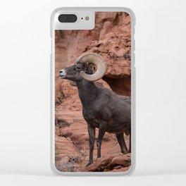 Desert Bighorn, Valley of Fire - III Clear iPhone Case