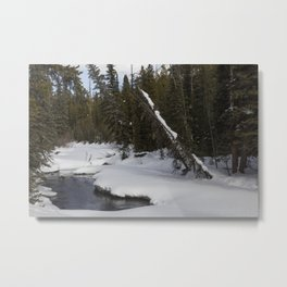 Carol M Highsmith - Snow Covered Landscape Metal Print