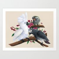 Fluffer, Congo and Charlie Art Print