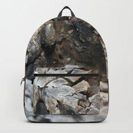 Textured Tree Stump Of Eucalyptus Tree  Backpack