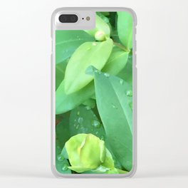 Kubota Garden green plant leaves with water drops Clear iPhone Case