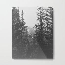 Between the Pines Metal Print