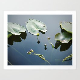 floating world 2 Art Print