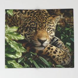 Jaguar - At Rest Throw Blanket