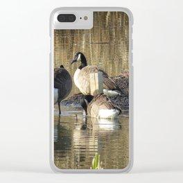 Ducks at John Heinz Wildlife Reguce Clear iPhone Case