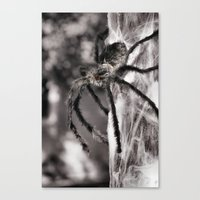 creepy Canvas Prints featuring Creepy! by IowaShots