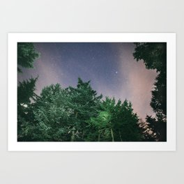 Light in the Trees and Stars in the Sky Art Print