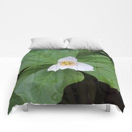 Trillium 2 Comforters