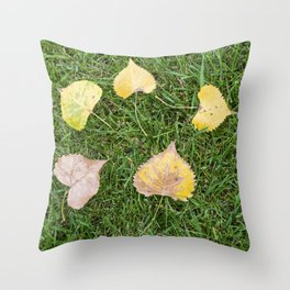 Fallen Autumn Leaves 13 Throw Pillow