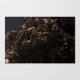 Fold 1 Canvas Print
