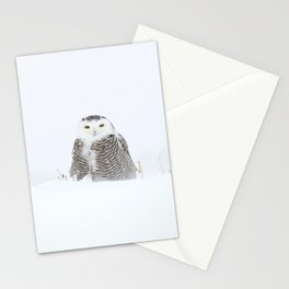 White on white Stationery Cards