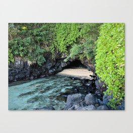 turtle caves close up Canvas Print