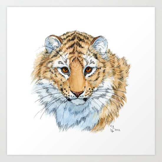 Young Sweet Tiger Art Print