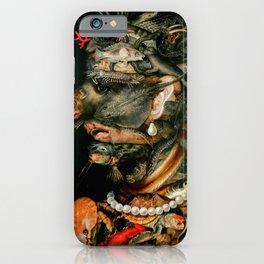 "Giuseppe Arcimboldo ""Four elements - Water"" iPhone Case"