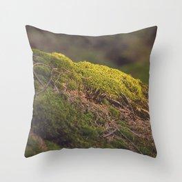Nature's Velvet Throw Pillow