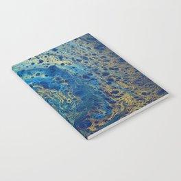 Blue and Gold Spiral Art Notebook