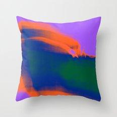 358 Throw Pillow