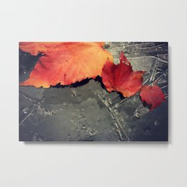 First Frost is Coming soon Metal Print