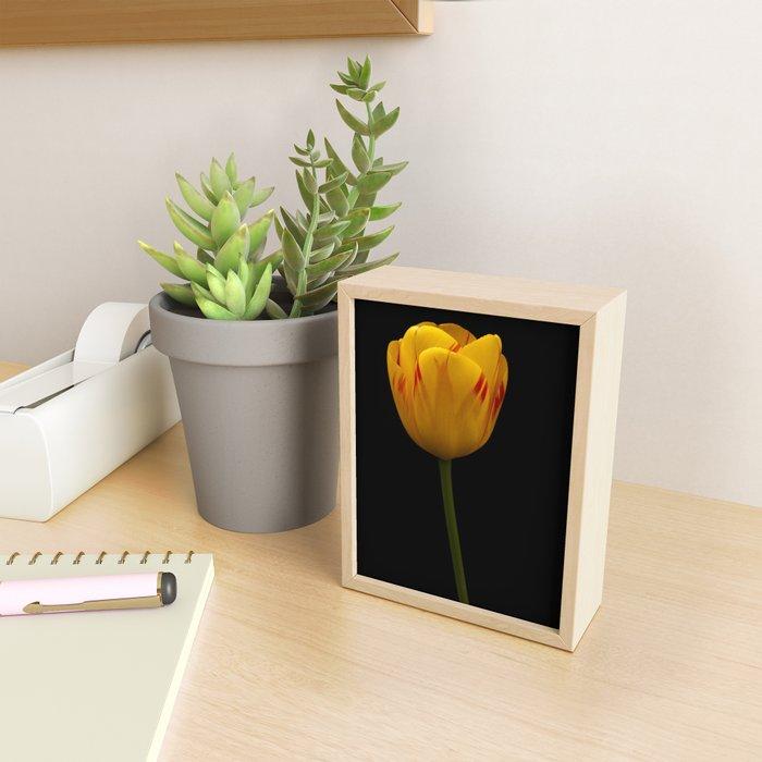 A Flaming Tulip Framed Mini Art Print