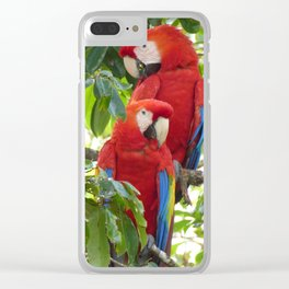 Colorful Macaw Couple Clear iPhone Case