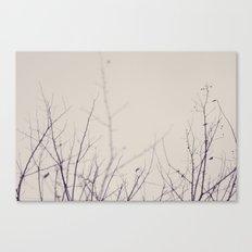 Winter's Bones Canvas Print