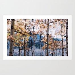 autumn in the rockies ii .  Art Print