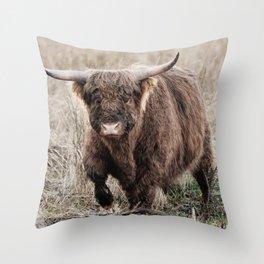 Scottish Highland Photo   Dutch Wildlife Photography   Scottish Highland Cattle Bull Throw Pillow