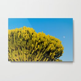 The sun shines and the moon watches Metal Print