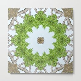 Bark Leaves Stone Kaleidoscope Art 5 Metal Print