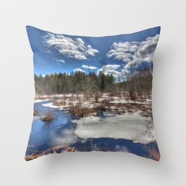 Early Spring Marsh Throw Pillow