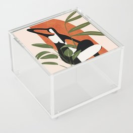 Abstract Female Figure 20 Acrylic Box