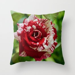 Scentimental Rose Throw Pillow