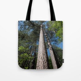 Tall Pine Trees in Mt. Lemmon Tote Bag