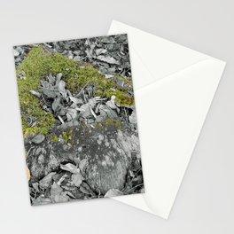 Mossy Stump Stationery Cards