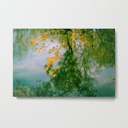 Nature Abstract in Autumn Metal Print