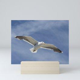 Wildlife Seagull flying Mini Art Print