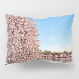 Washington DC Cherry Blossoms Pillow Sham