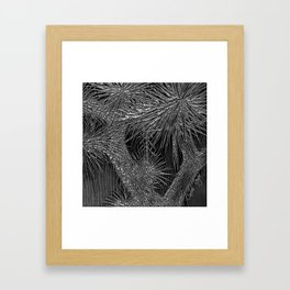 Joshua Tree Plata by CREYES Framed Art Print