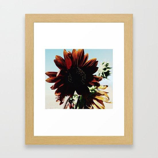 Sunflower by orinokia
