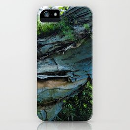 Blue Azure Paper Bark Tropical Tree in Hawaii iPhone Case
