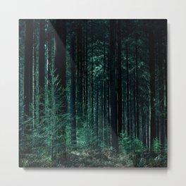 Tree Aesthetic Metal Print