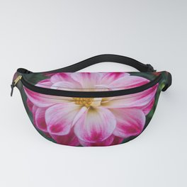 pink dahlia in the garden Fanny Pack