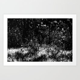 Forest mess black and white high contrast abstract plants Art Print