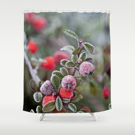 Winter Berries With Hoarfrost Shower Curtain