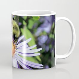 Pollen Dusted Bee on Asters Coffee Mug