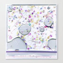 Glitter Bag Canvas Print