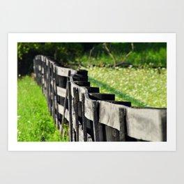 Horse Fence Art Print