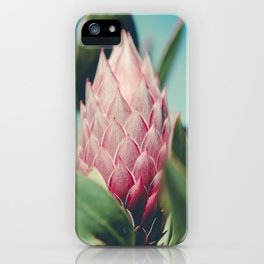 King Protea Protea cynaroides Sugar Bush iPhone Case