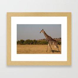 Giraffe I Framed Art Print