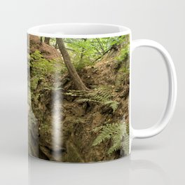 Fern Canyon at Starved Rock State Park Illinois Coffee Mug